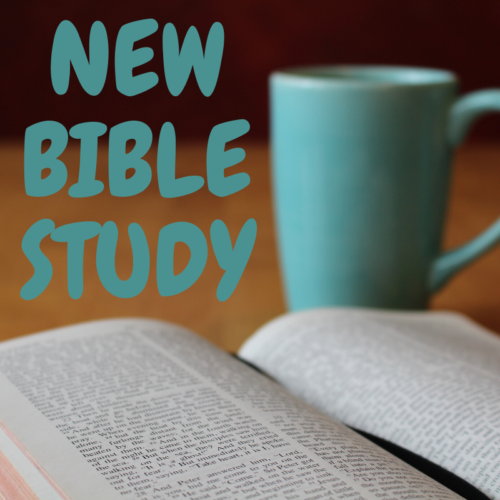 New Bible Studies available